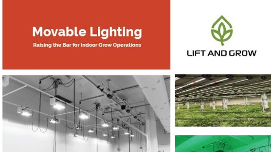 Brochure-LiftnGrow-Cannabis Hemp Lights