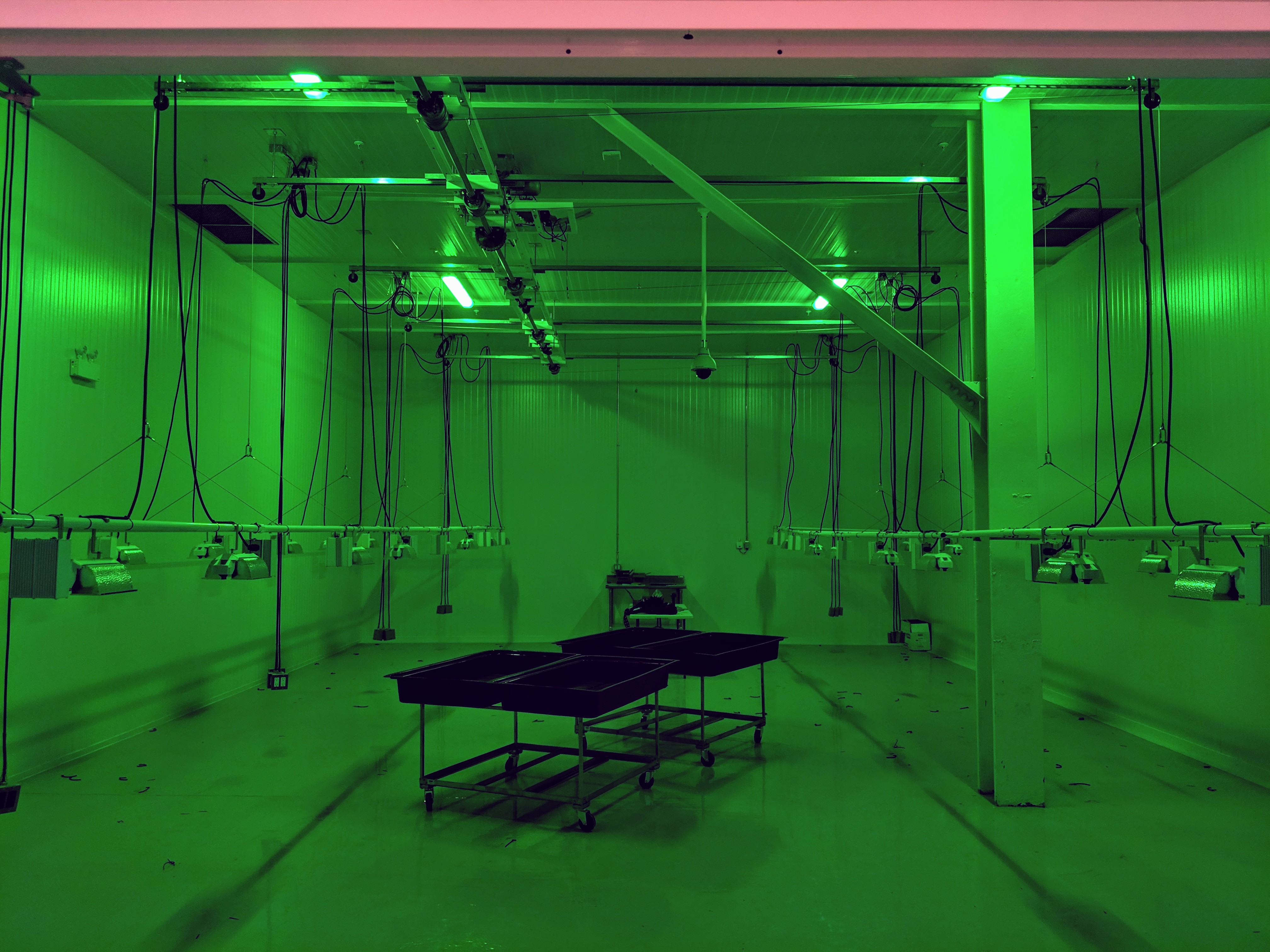 Overhead Movable Lighting-Agricultural