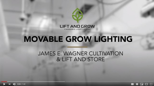 Video-Movable Grow Lighting-Cannabis